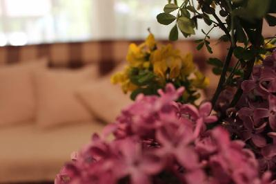 Naše mirno Eko selo ''Natura Art'' dobio je nove apartmane!